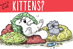 Simon's Cat Care - How to care for Kittens