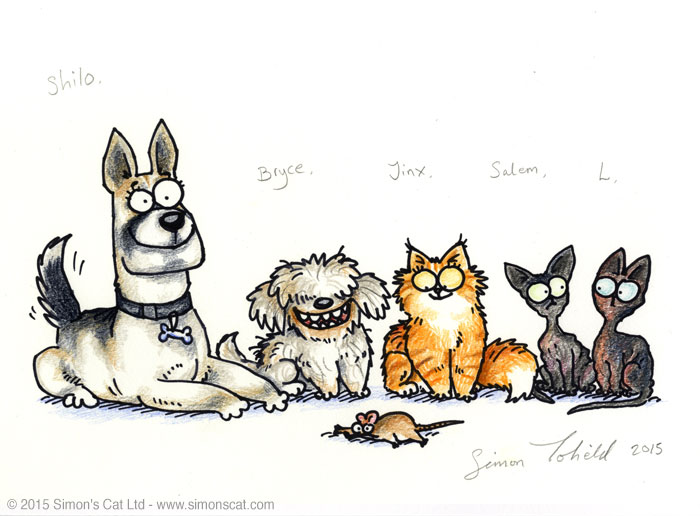 Simon's Cat Your Pet Drawn Shilo Bruce L Salem Jinx