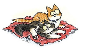 Flufy Fry Your Pet Drawn Indiegogo Simon's Cat Drawing