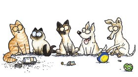 Kes Lyta Delenn Your Pet Drawn Indiegogo Perk Simon's Cat Drawing