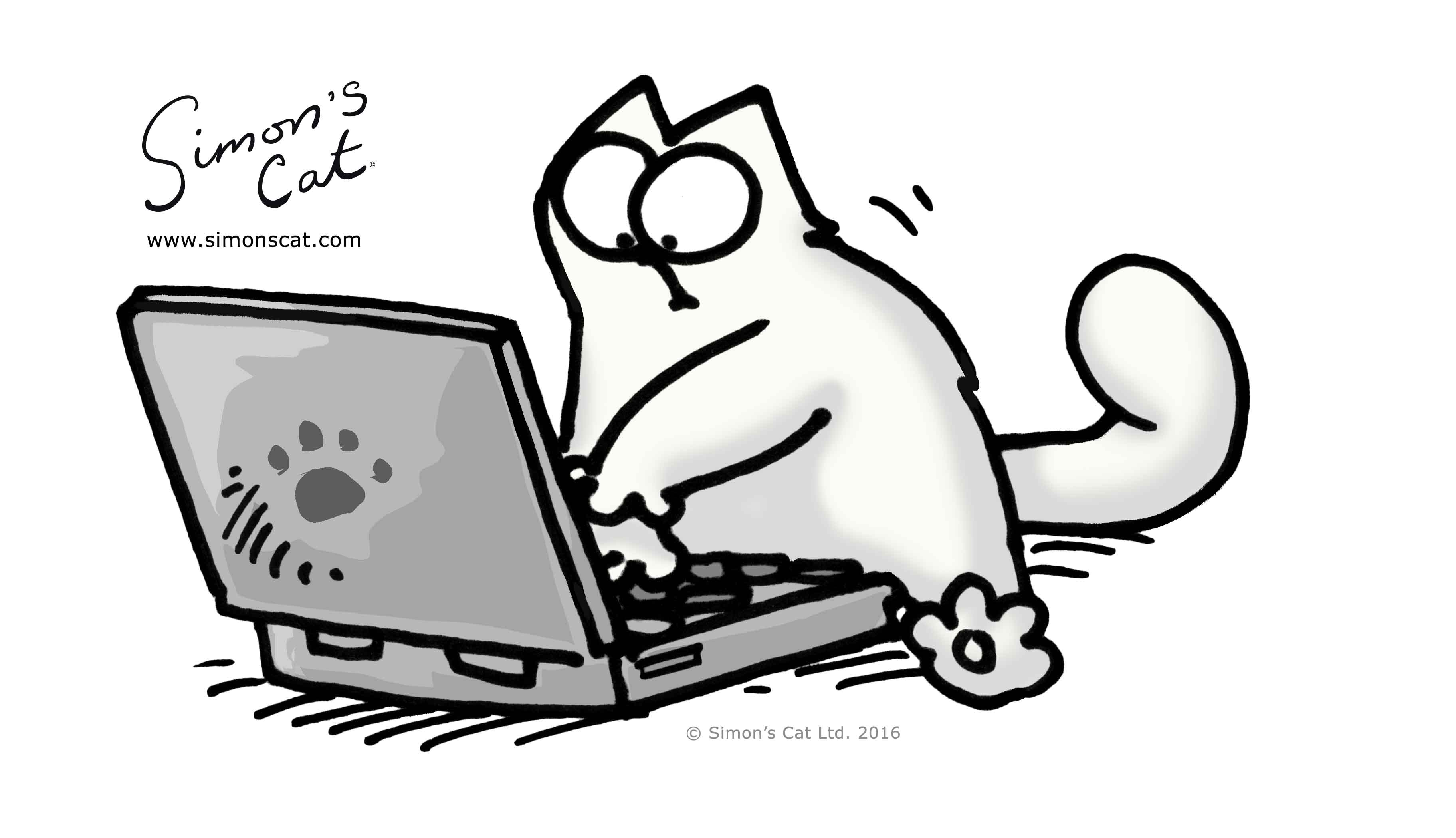 Simon The Cat Pictures