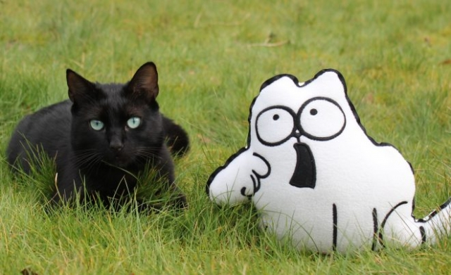 Simon's Cat - Black Cats